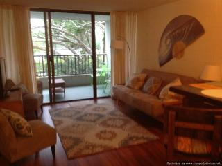 Oceanfront condo--swim with the honu(sea turtles)!, Hilo