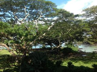 The view from the lanai, living room, bedroom