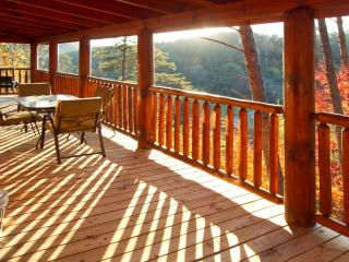 Morning Back Deck View