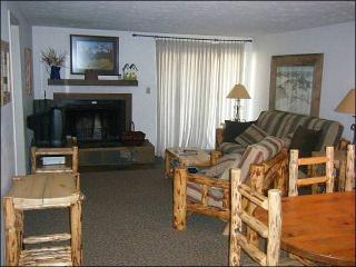 Cozy Mountain Condo - Ideal for Summer or Winter Trips (1248), Crested Butte