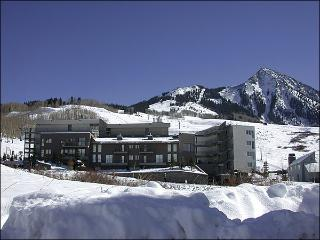 Gateway Condo with Great Views - Close to the Shuttle Stop (1298), Crested Butte