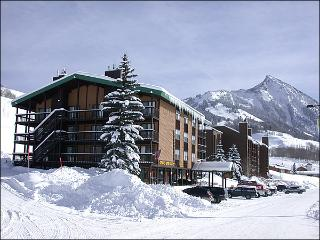 Charming Evergreen Condo - Recently Remodeled Kitchen (1295), Crested Butte