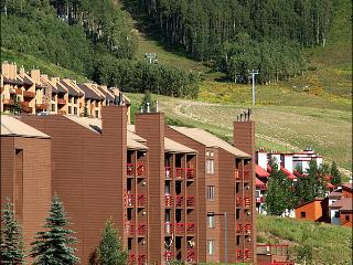 Charming & Inviting Condo - At the Base of the Resort (1313), Crested Butte