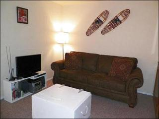 Sleeper Sofa and Flat-Screen TV in the Living Room