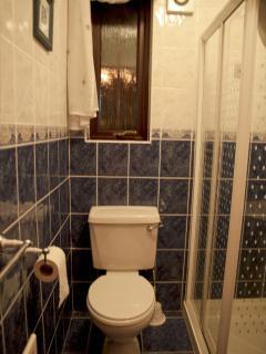 Bedroom #1 en suite view 1 Mar 2013