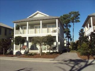 Short Walk to Uncrowded Beach/Grayton Beach/Gated