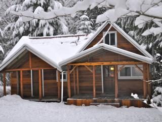 Winter at Bob's Cozy Cabin