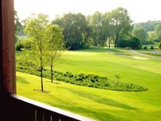 Luxury Villa at the Grand Geneva Resort