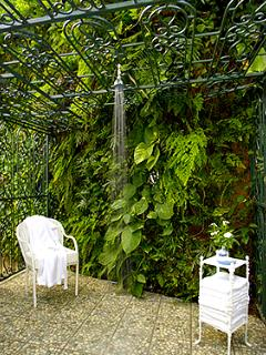 Doors from these bathrooms open to our hidden Jungle Shower, much enjoyed by parents and kids alike. While all guests...