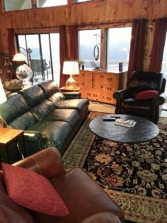 Den leather furniture.