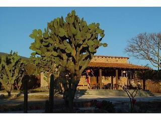 Rancho Pitaya Country Guest Lodge, Oaxaca