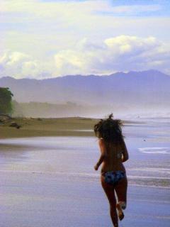 Need a beach run?