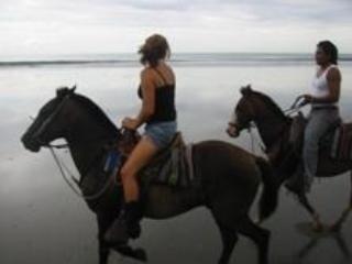 Paseos a caballo en nuestra hermosa playa.