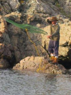 Catching capelin with a cast net