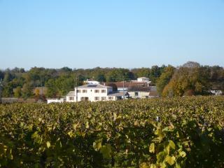 Maison de Vignes, Fleac sur Seugne