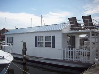 Houseboat Delphinus: Spacious and Comfy Floating Home Near Inner Harbor!, Baltimore