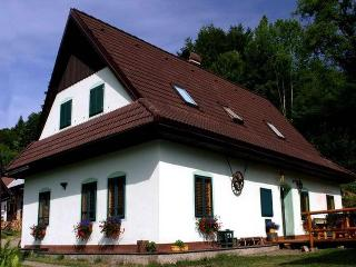 Mountain cottage Stara Horaren