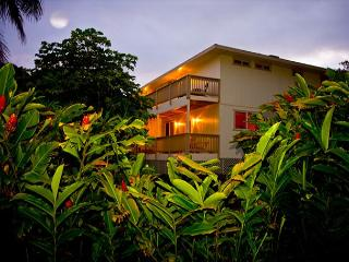 Sleep14+ Steps from POIPU beach. Central AC, BEST VALUE in POIPU!