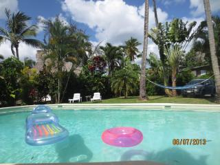 Our swimmingpool and tropical garden