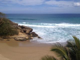 Beautiful Luxury Beachfront Apt. at Sandy Beach