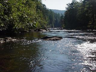 2 Bedroom plus Loft Riverside Retreat on the Toccoa River
