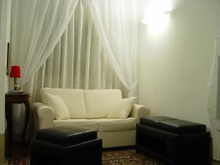 Living room with the sofa bed