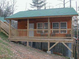 "Cabin #4 - ""Gone Paddling"", Bryson City"