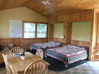 "Cabin #2 - ""Gone Hiking"", Bryson City"