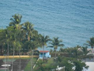 Community Park / Ocean View