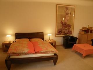2 Bedroom Vacation Rental at EigenArt Apartment in Berlin, Berlín