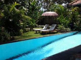 Private Garden Villa with pool - close to Lovina, Lovina Beach