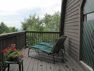 White Mtn Barn Guest House w/ Views - Littleton