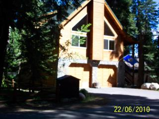 """Eagles Nest"" Large Lakeside Cabin Like New!, Homewood"