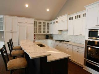 Kitchen with top Pro aplliances: Wolf cooktop, ICON oven, Sub-Zero fridge