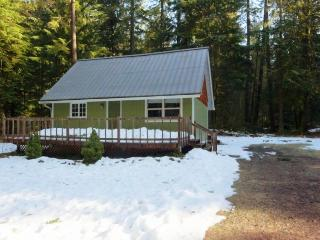 Lovely dog-friendly mountain cabin w/private hot tub! Just 400 feet to river!, Rhododendron