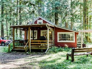 Quiet, dog-friendly, riverfront cabin with private hot tub & outdoor fireplace!