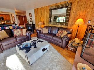 Upscale condo on shuttle route to Vail with shared pool, Silverthorne