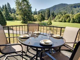 Comfy home w/ scenic mountain views, nearby golf and activities!