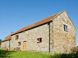 ORCHARD COTTAGE, pet-friendly, beautiful views, great location, near Goathland, Ref 22015