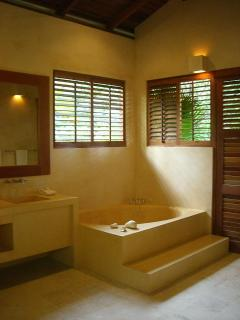 Master Guest bathroom