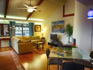 Barton Hills Abode 2/2, Austin