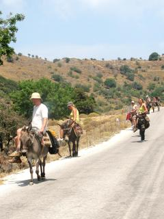 Outdoor fun for the whole family includes donkey trekking