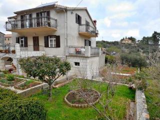 Apartment in quiet village Vrisnik