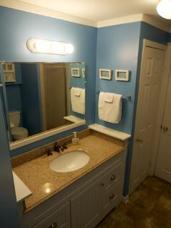 Bathroom 2nd alternate view