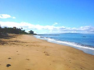 Kihei Bay Surf #238 Renovated, SUMMER SPECIAL $75 / NIGHT!