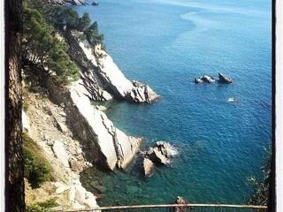 A paradise on the shores,direct access to the sea, Zoagli