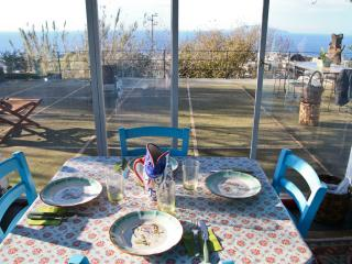 Capri- Lovely Cozy Villa with large garden and ter