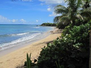 At the Waves - Oceanfront Villa - Ground Level, Isla de Vieques