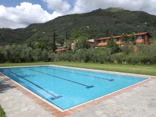 house with private garden, Camaiore