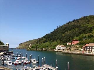 HARBOUR::Quiet 4bdr house seaviews 8p pet friendly, Santa Cruz de Tenerife
